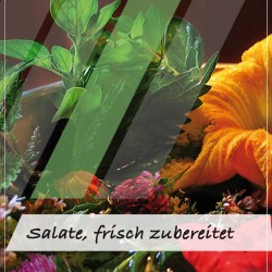 Aussteller für Salate