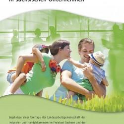 Broschüre IHK Chemnitz